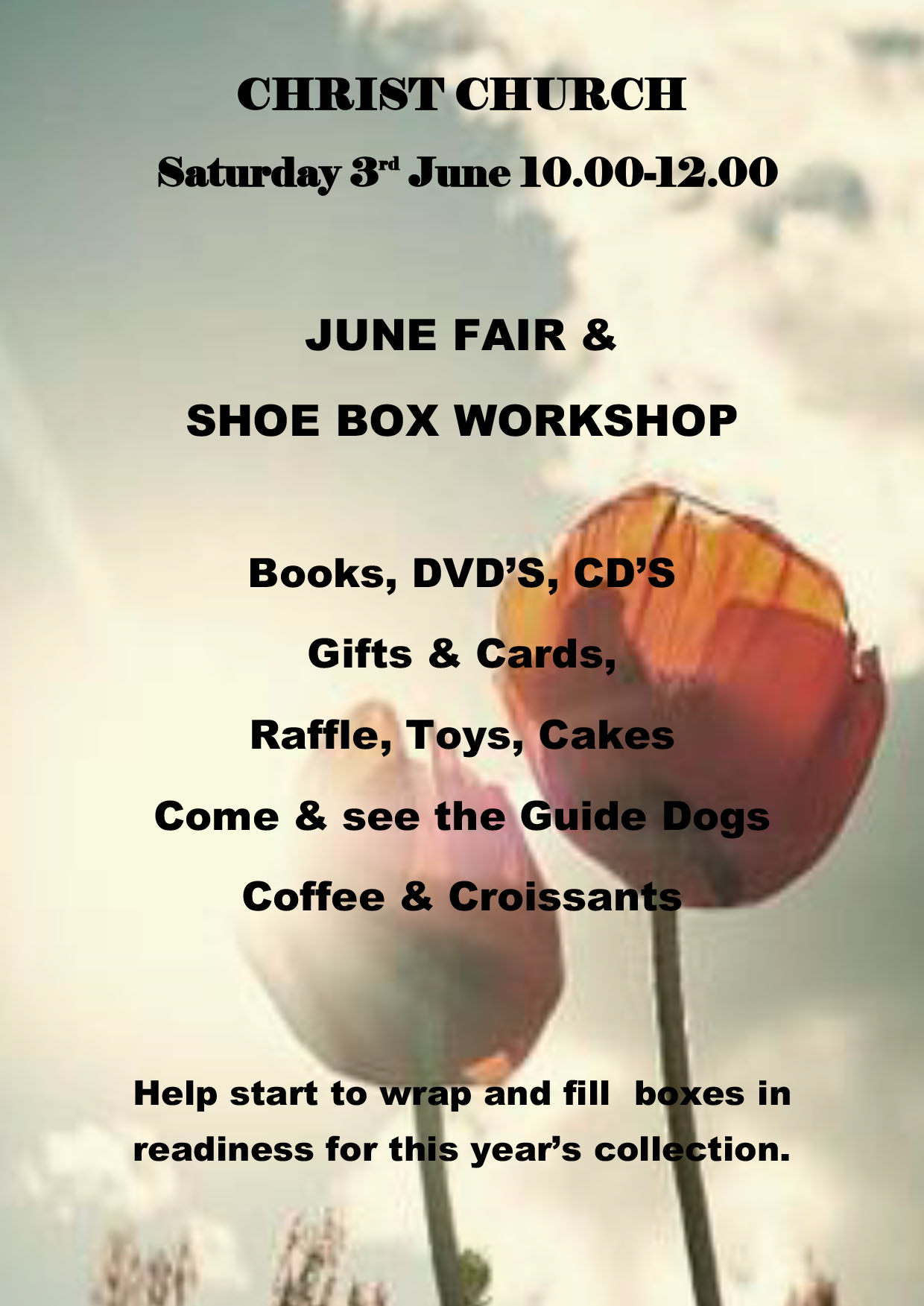 June Fair and Shoe Box Workshop